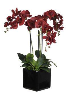 House of Silk Flowers Artificial Triple-Stem Phalaenopsis Orchid Arrangement, Red House of Silk Flowers,http://www.amazon.com/dp/B0030MD0BQ/ref=cm_sw_r_pi_dp_Cp-Esb1K31PRQT0Z