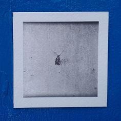 Tzur Waisblum (detail) @3361 Gallery, Florentine, Tel Aviv