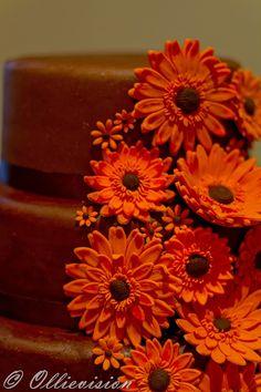 chocolate cake with orange flowers