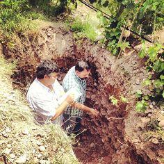 Juan Roby y Pedro Parra trabajando en la calicata de nuestro viñedo de Chardonnay en Perdriel, Luján de Cuyo, Mendoza.