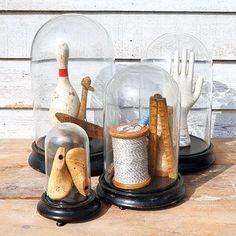 Vintage treasures in glass domes, love!