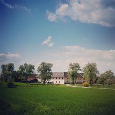 #ellbognergut #bindermichl #keferfeld #linz #linzpictures #farmlife #farm #bauernhof #stadtbauern #landwirtschaft #citylife #spring #economy #farm365 #farmhouse #igerslinz #upperaustria #vegan #bio #landleben #instapic #potd