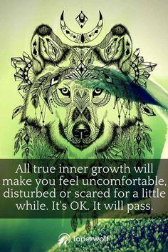 Spiritual Awakening, Spiritual Quotes, Awakening Quotes, Spiritual Growth, Metaphysical Quotes, Spiritual Healer, Spiritual Enlightenment, Affirmations, Wolf Quotes
