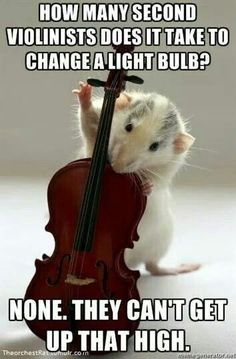 Oooh, I like violin jokes for a change (being a violist). Music Puns, Music Humor, Music Memes, Funny Music, Music Quotes, Violin Quotes, Sound Of Music, Music Is Life, Good Music