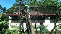 Kodim 0726/Sukoharjo: BABINSA KORAMIL 12 BENDOSARI SIGAP BANTU MUSIBAH P... Arch, Outdoor Structures, Garden, Longbow, Lawn And Garden, Arches, Gardens, Wedding Arches, Outdoor
