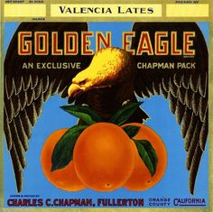 Fullerton Orange County Golden Eagle Orange Citrus Fruit Crate Label Art Print