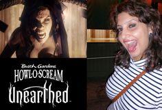 http://anamikaojha.com/2015/10/28/howl-o-scream-at-busch-gardens-tampa-fl/