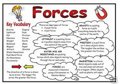 Science Display Resource - Forces Fact Mat