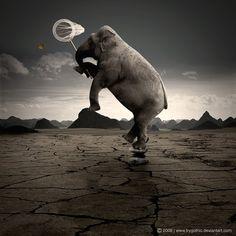 Thaz One Crazy Elephant ...