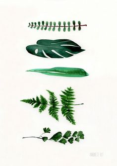 Botanical art print 5 Green leaves from original par TheClayPlay