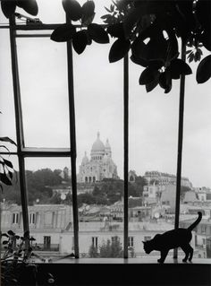 completely enchanted with these black and white photographs by elisabeth toll -- not only for the fond memories of sacré-cœur and rooftop views, but also for the languid and gauzy nostalgia pervading every parisian moment . . .