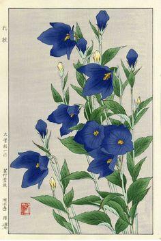 SHODO KAWARAZAKI JAPAN DATED 1954. INK ON PAPER 10.25'' W x 15'' H