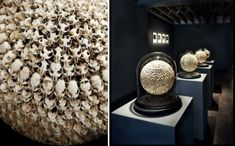 Alastair Mackie creation using mouse skulls taken from owl pellets