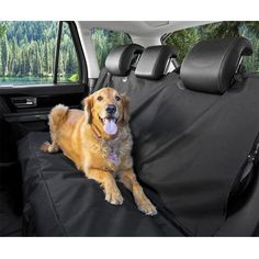 Tri-polar Universal 600D Oxford Cloth Dog Blanket Waterproof Tear Proof Dog Car Seat Cover Dog Hammock for Back Seat Car Pet Barrier for SUVs, Cars, Trucks and Vehicles, Black * Wow! I love this. Check it out now! (This is an amazon affiliate link. I may earn commission from it)