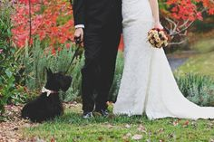 #autumn wedding #dog | Katie Estes Photography | The Lovely Find