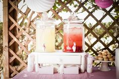 the drinks in colors of the party for this cute birds and cages themed party