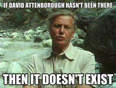 """""""David Attenborough""""   quickmeme »"""