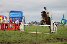 Big Show, Show Jumping, Knock Knock, Horses, Warm, Photo And Video, Facebook, Summer, Animals