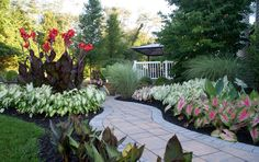 Modern caladiums are bigger, brighter and easier to grow than ever. They keep yards and gardens looking great all summer long without a bit of attention.