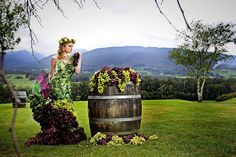 grapes grapes grapes Yarra Valley, Aquarium, Wedding Venues, Goldfish Bowl, Wedding Reception Venues, Wedding Places, Aquarium Fish Tank, Aquarius, Wedding Locations
