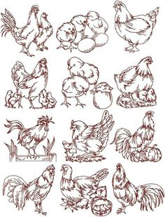 Redwork Embroidery Advanced Embroidery Designs - Rooster and Hen Redwork Set. Advanced Embroidery, Folk Embroidery, Embroidery Transfers, Machine Embroidery Patterns, Hand Embroidery Designs, Vintage Embroidery, Ribbon Embroidery, Cross Stitch Embroidery, Embroidery Sampler