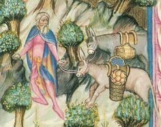 Moving And Storage, Donkeys, Saddles, Medieval, Packing, Horses, Art, Historia, Roping Saddles