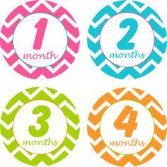 Baby Month Stickers Baby Monthly Stickers Girl Monthly Shirt Stickers Chevron Baby Shower Gift Photo Prop Baby Milestone Sticker  Zebra