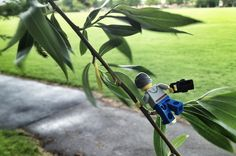 Adventures of a LEGO Photographer Taken with an iPhone