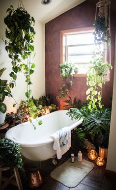 bathroom with clawfoot bathtub and plants