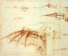 Wing Study of Flying Machine, c. 1500-05. From Leonardo Da Vinci's Codex Atlanticus.