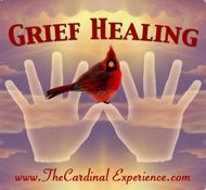 Red Bird Quotes   ... out what the meaning of seeing a red cardinal bird, ...   Quotes