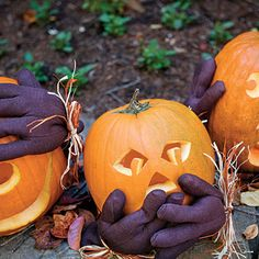 Best DIY Scary Pumpkin Carving Ideas for Halloween Yard Decorations Pumpkins and Halloween festival is very closely related to each other. Pumpkins are Halloween Facts, Holidays Halloween, Scary Halloween, Halloween Pumpkins, Halloween Ideas, Halloween Stuff, Halloween Window, Cheap Halloween, Halloween Images