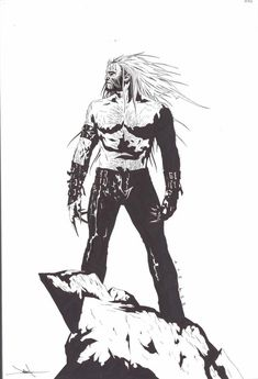 Sabertooth by Jae Lee [ Rise of the Immortals ]