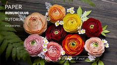 Cardstock Ranunculus flower, step by step tutorial and template Crepe Paper Roses, Paper Flowers Craft, How To Make Paper Flowers, Giant Paper Flowers, Paper Garlands, Paper Peonies, Pink Peonies, Yellow Roses, Miniature Plants