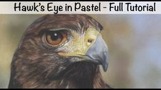 Narrated tutorial showing you how I create a hawk's eye in soft pastel on Pastelmat. If you like this check out my full catalogue of longer tutorials at http. Eagle Art, Jackson's Art, Pastel Pencils, Pastel Art, Hawkeye, Prints For Sale, Online Art, Bird, Monet
