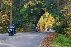 Fall 2013 Backbone Rock Northeast Tennessee
