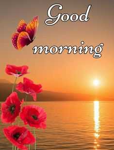 Good Morning Friends Images, Good Morning Beautiful Pictures, Latest Good Morning Images, Good Morning Images Flowers, Good Morning Roses, Good Morning Sister, Good Morning Image Quotes, Good Morning Cards, Cute Good Morning