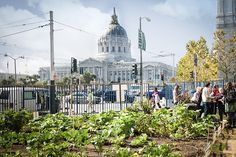 More people are moving to urban areas, and making new connections with rural farmers will be necessary to feed them.