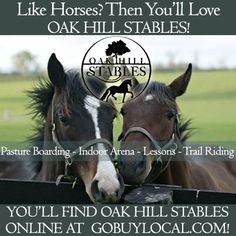 Like horses? Then you'll <3 Oak Hill Stables! http://www.gobuylocal.com/offerseo/River_Falls-WI/Oak_Hill_Stables/2079/1779/ #goriverfallswi