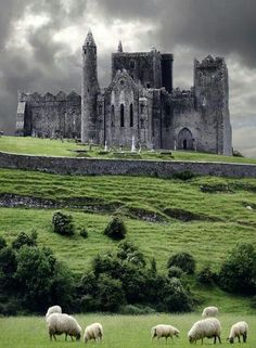 Medieval castle  Cashel Ireland