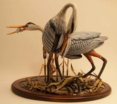 Group_Waterbirds  by Phyllis Sickles
