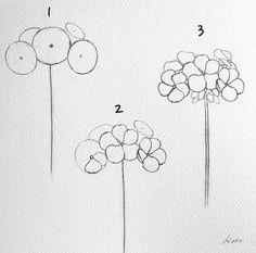 How to draw flowers step by step for beginners – Pencil Drawing Easy Flower Drawings, Flower Drawing Tutorials, Flower Sketches, Easy Drawings, Art Tutorials, Drawing Sketches, Pencil Drawings, Easy To Draw Flowers, Drawing Ideas