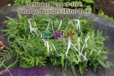 Califorina Peppertree Fresh Leaf* SCHINUS MOLLE PRODUCTS* Organic Peruvian Pepper Tree (Schinus Molle)* Pirul tree * Edible Medicinal Benefits* Dried Herbs* pirul soap* Spiritual cleansing* SCHINUS MOLLE BEAUTY PRODUCTS* Herbal Extracts* Plant Seeds