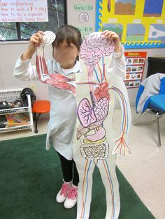 Body System Unit - I traced the kids on butcher paper and then we learned about and added a new body system to our body cut outs each day