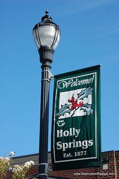 Holly Springs NC by Destination Raleigh, via Flickr #hollysprings #dragonfly