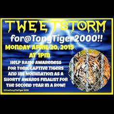 My April 20 2015 Tweetstorm trended #Shorty4Tony!!