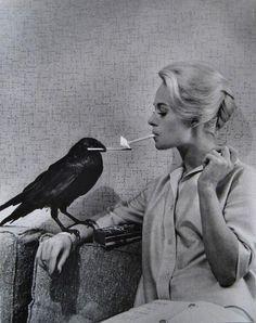 Tippi Hedren on the set of The Birds (via blackisanattitude)