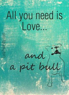 Love and a Pitbull