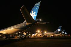 Night flight - Air Tahiti Nui aircrafts lined up at Faaa International Airport Air Tahiti, Tahiti Nui, Fly Air, International Airport, Bora Bora, Auckland, Aviation, Aircraft, Night