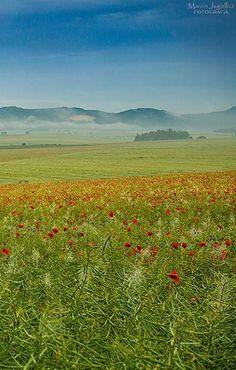 Stolowe Mountains Poland